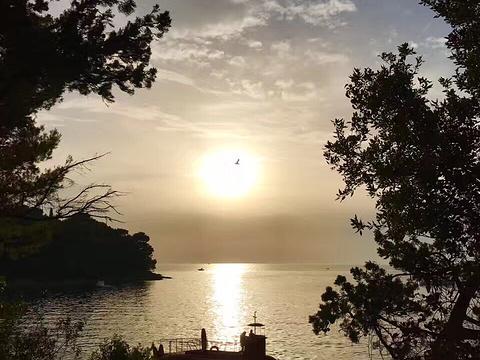 Brijuni Islands旅游景点图片