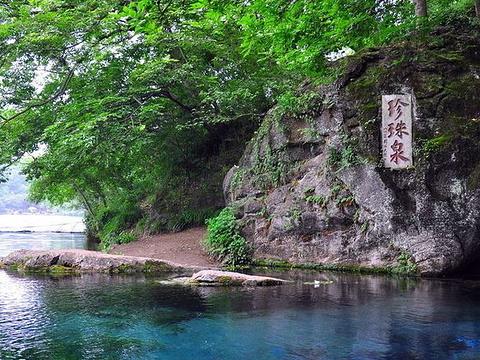 珍珠泉风景区旅游景点图片