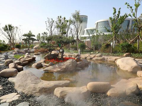 鼓浪沙滩猫爪温泉旅游景点图片