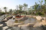 鼓浪沙滩猫爪温泉