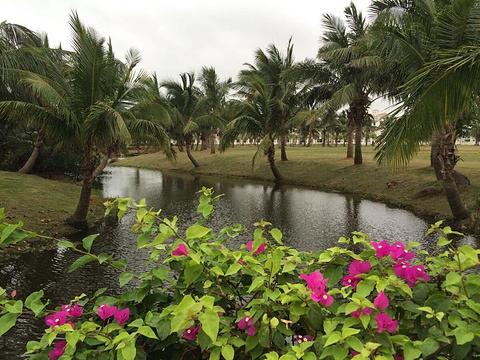 海甸岛旅游景点图片