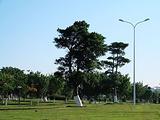 鸿山人民公园