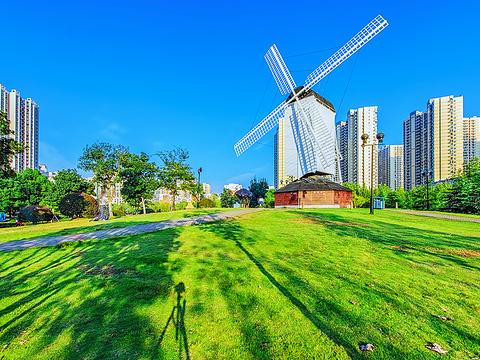 关山荷兰风情园旅游景点图片