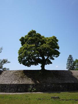 人吉市旅游景点图片