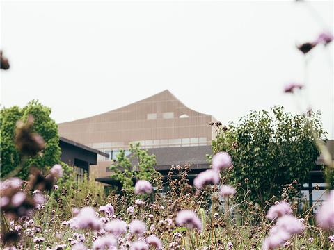 紫一川·日式汤泉