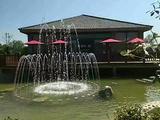 金雨玫瑰温泉度假区