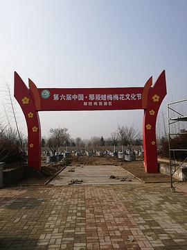 名优花木生产科技园区的图片