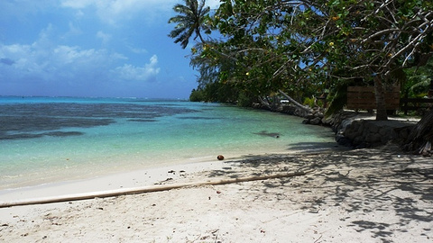 莫雷阿岛旅游图片