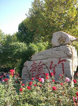 友谊公园的图片