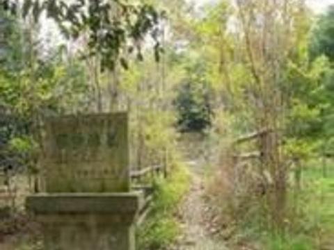 缪希雍墓旅游景点图片