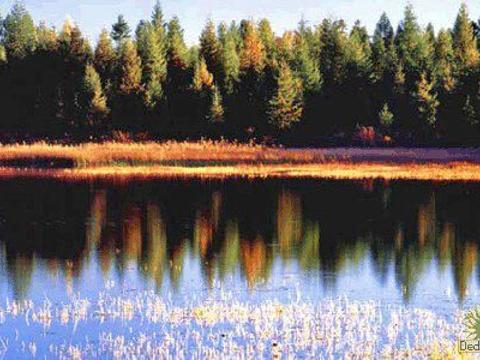 圆池旅游景点图片
