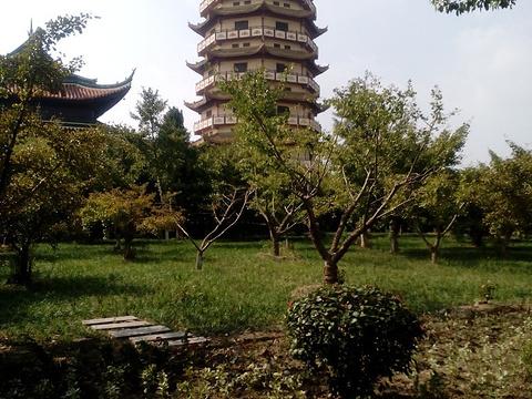 同觉寺旅游景点图片