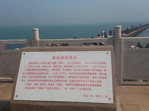 孤东海堤旅游景点图片