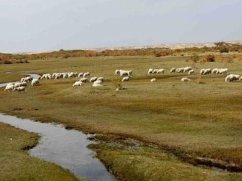 西部戈壁公园旅游景点图片