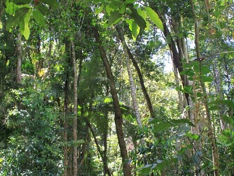 D'Aguilar National Park旅游景点图片