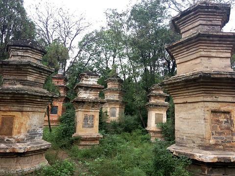 风穴寺旅游景点图片