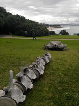 莫塞尔贝旅游景点图片