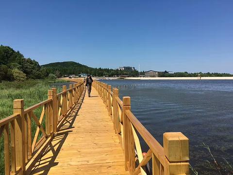 桃源湖的图片
