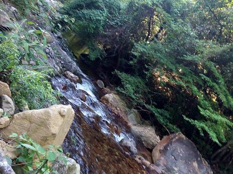 桂峰山旅游景点图片
