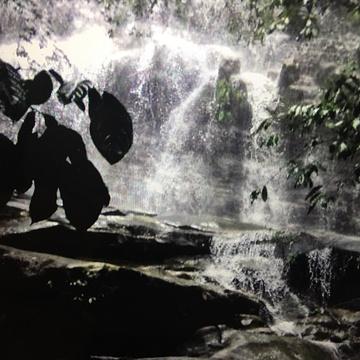 库巴国家公园
