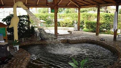 台山喜运来温泉的图片