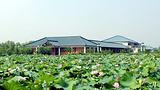 琵琶湾生态园