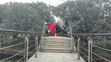 渔舟湾湿地公园