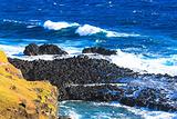 菲利普岛自然公园