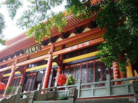 寿量寺旅游景点图片