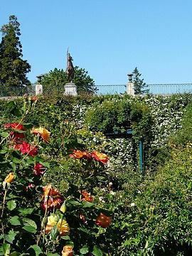 主教花园的图片