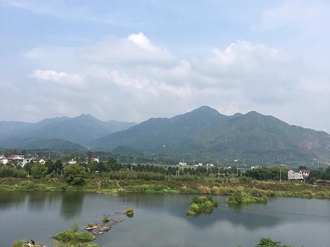莲花蟹园旅游景点图片