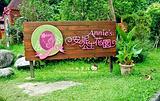 安妮公主花园