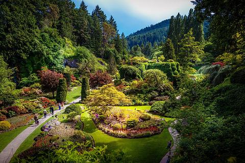 温哥华岛旅游景点图片