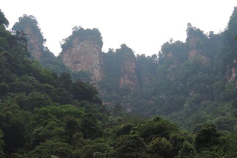 五柱峰景区的图片