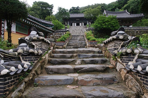 蔚山旅游图片