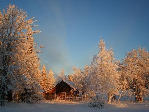 Palosaari Reindeer and Fishing Farm旅游景点图片