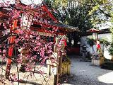 Genkuroinari Shrine
