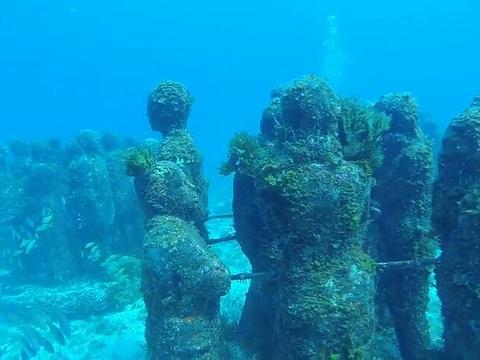 坎昆水下博物馆旅游景点图片
