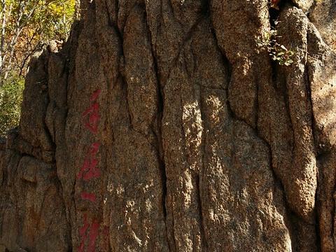 朱雀山森林公园旅游景点图片