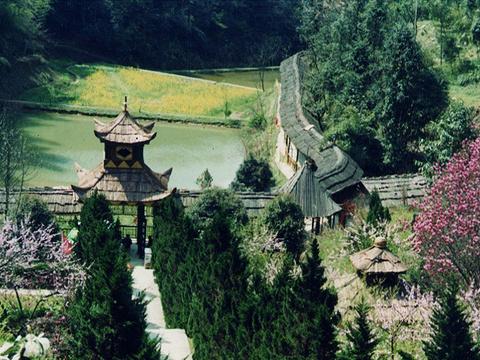 秦人村景区旅游景点图片