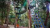 仙岛湖侏罗纪公园景区