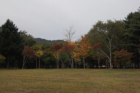 大田教育博物馆