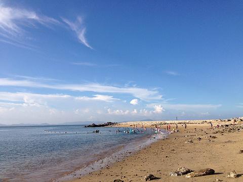 放鸡岛海洋度假公园旅游景点图片