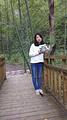 太子山国家森林公园