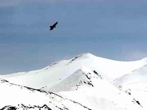 木孜塔格峰旅游景点图片
