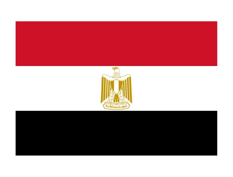 国庆节(Revolution Day July 23 in Egypt)