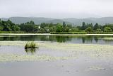 紫菱湖旅游区