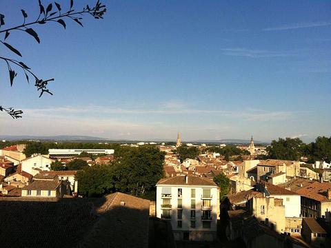 阿维尼翁新城旅游景点图片