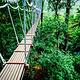兰卡威Umgawa丛林飞跃