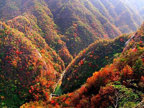 深山红色旅游景区旅游景点图片